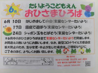 CIMG4854.JPG